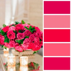 Свадьба цвета фуксия