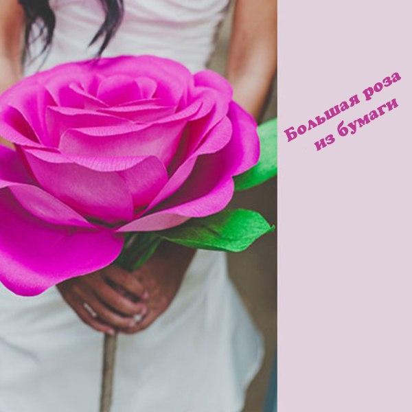 Цветы крупные из бумаги гофрированной бумаги своими руками